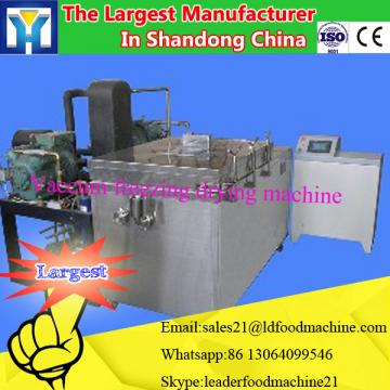 Household Mini Vacuum Freeze Dryer/0086-13283896221