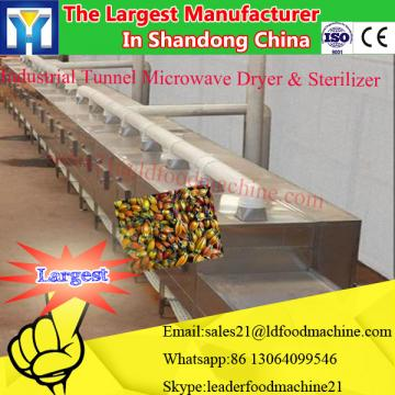 Vegetable and Fruit Drying Machine/Dryer machine/Drying Oven