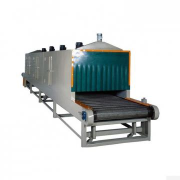 Preserved Fruit Mesh Belt Dryer Machine