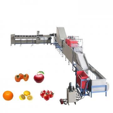 fruit juice juicer production line processing machine