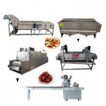 Factory Hot Sale Juice Hand Machine 100% Fresh Fruit Juice Production Line Machine