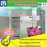 New Condition Fruits Vegetables Processing Microwave Red Chili Dryer with CE