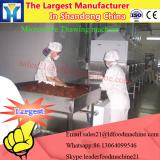Continuous type microwave food dryer & sterilizer