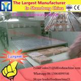 Food Industry High Efficiency Fig Microwave Sterilizing Drying Machine